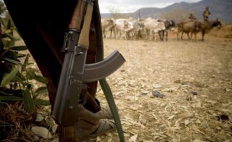 A gun-carrying bandit