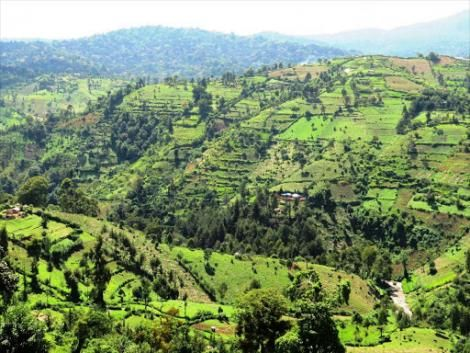 The area where Arror Dam is to be constructed in Elgeyo Marakwet County.