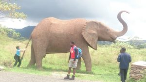 Kenyan Backpacker Best Kenyan Travel Blog