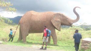 Kenyan Backpacker Best Kenyan Travel Blog