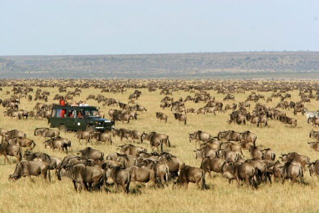 Top 5 Tourist Destinations to Visit in Africa