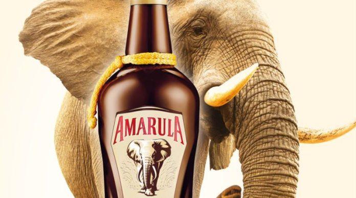 Kenyan-Collective-Amarula-World-Branding-Forum