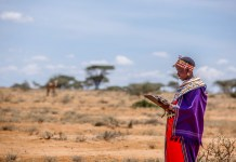How Technology Is Saving The Endangered Grevy's Zebra