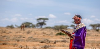 How Technology Is Saving The Endangered Grevy's Zebra
