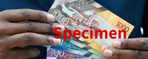 File image of Kenyan banknotes