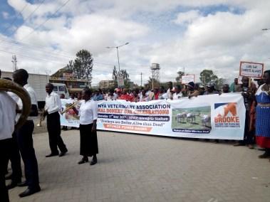 Donkey Day celebrations procession