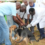 World Rabies Day Celebrations and VOYA awards Report 2016
