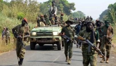 les rebellions du centrafrique