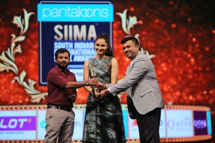 siima film awards 2019 pictures 010