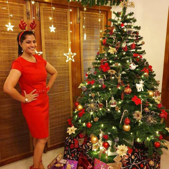 Actress And actors Christmas Celebration 2019 Photos 005