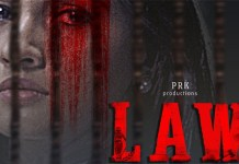 law kannada movie review