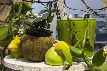 Orchideenausstellung 18-1