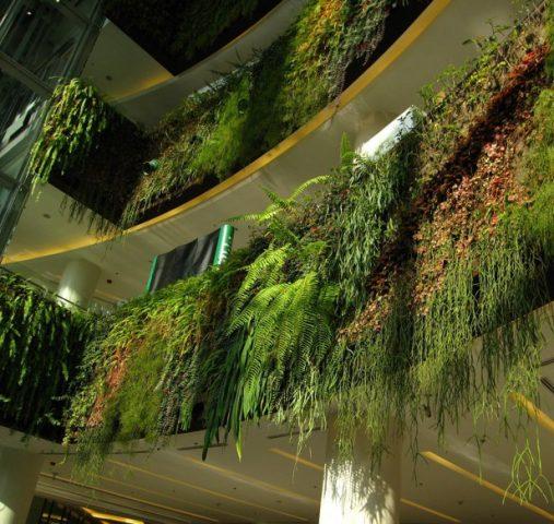 Apartman Duvarlarında ki Dikey Bahçeler