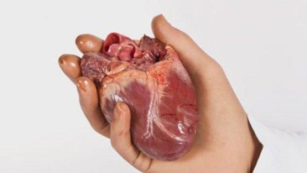 insan-kalbi-ile-ilgili-15-ilginc-bilgi_7929220-6550_1280x720