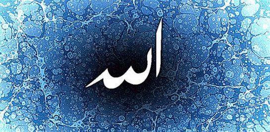 Allahü Teâlâyı Çok Anmalı