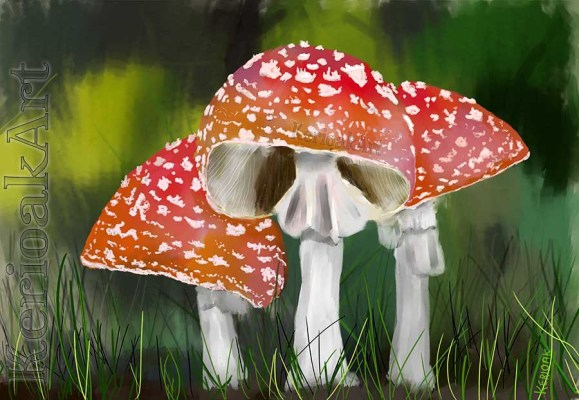 Fly Agaric in Pastel