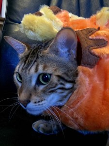 Tigger_Halloween