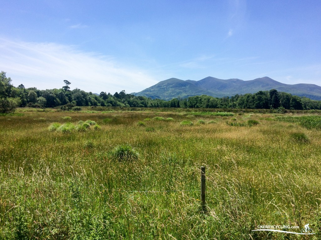 The Stunning views of the macgillycuddy's reeks from the National Park in Killarney