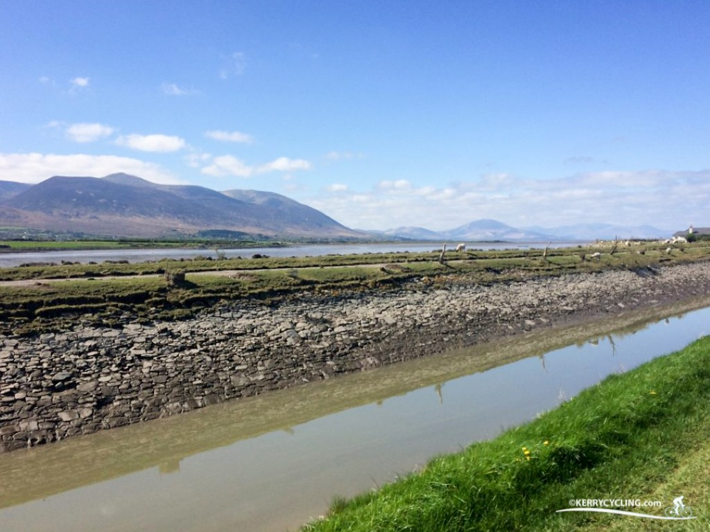 Views of Dingle Peninsula from the Tralee Canal