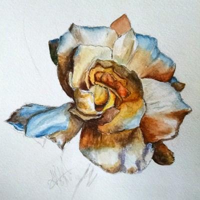 Golden Gardenia watercolor