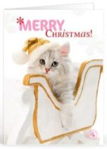 Kerst teksten collega voor op een kaartje