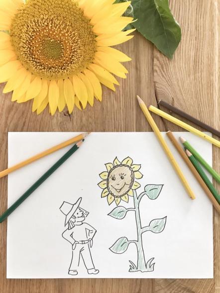 DIY rund um die Sonnenblume + Freebie