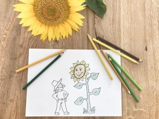 DIY, Spiel & Spaß - alles rund um die Sonnenblume --> Am Blog