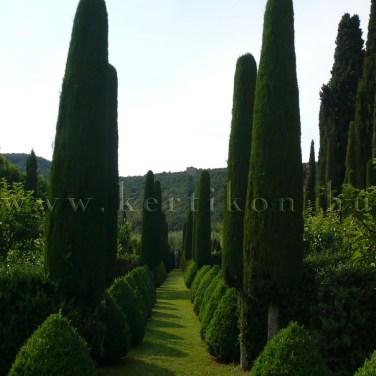 Villa Cetinale, sétány formanövények közöt