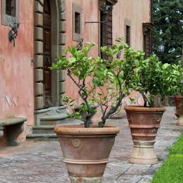Villa Vignamaggio, a villaépület és edényes növények