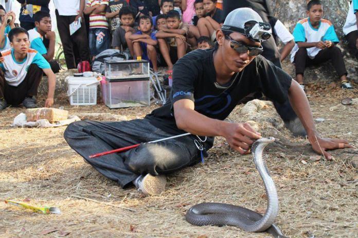 Snake Handling Training Juli 2017 – Yayasan Sioux Ular Indonesia