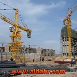 3t Construction Tower Crane Hot Sale Good Quality QTZ31 5