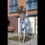 Altrex All Round Ladder