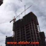 QTZ50 TC5008 Tower Crane with CE
