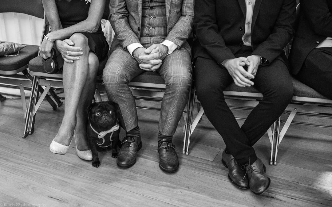 Black dog with bow tie at cheltenham wedding