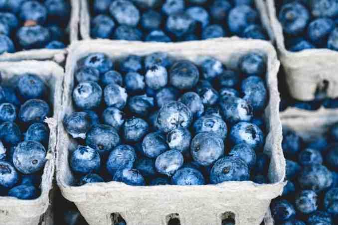farmers market blueberries in a cardboard pint