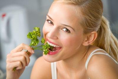 high fat ketogenic diet