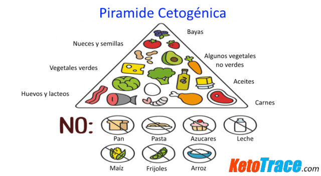 piramide dieta cetogenica