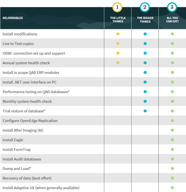A descriptive table showing the technical services provided by Application Managed Services consultants