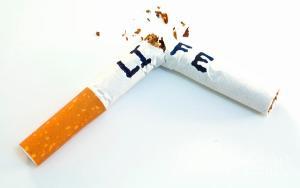 Nuuska ja tupakka – kauppa ja markkinointi