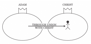 Union with Christ Graphically Romans 5-8