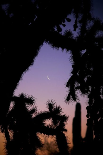 Arizona moon rising