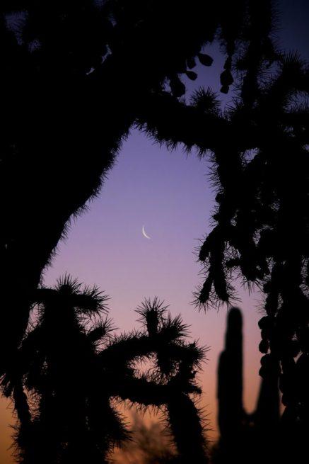 Arizona moon rising