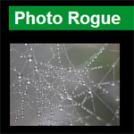 PhotoRogue