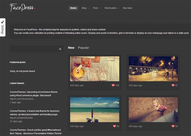 FacePress WordPress Theme