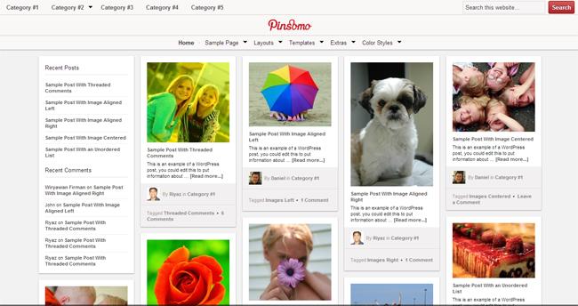 Pinsomo WordPress Theme