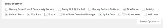 WordPress Show on Screen