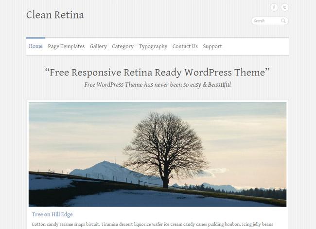 Clean Retina WordPress Theme