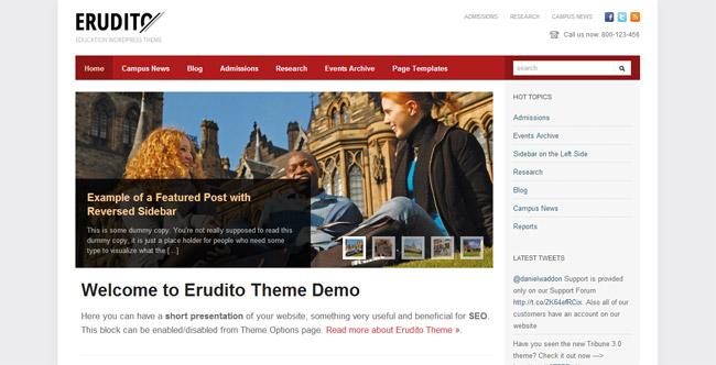 Erudito WordPress Theme