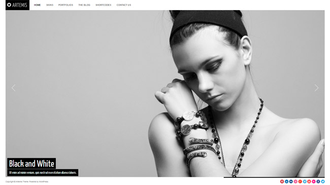Artemis WordPress Theme