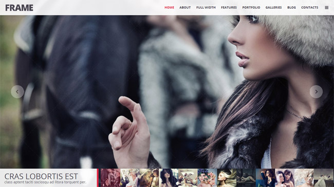 Frame WordPress Theme